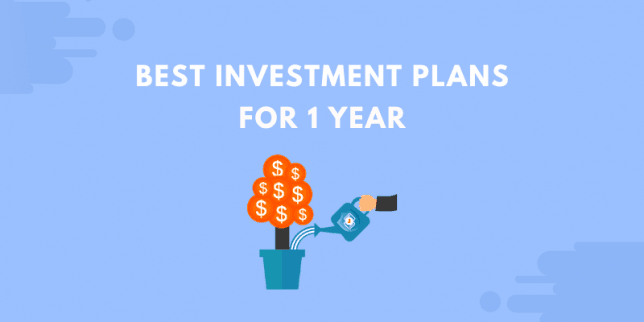 best investment plans for 1 year