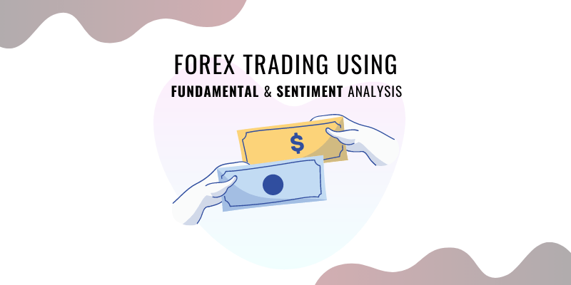 How to Trade Forex Using Fundamental And Sentiment Analysis